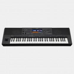 Yamaha PSR SX900 melody music Caen
