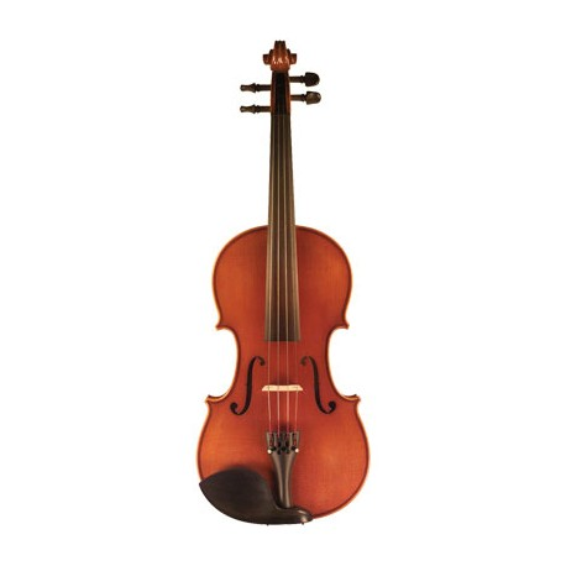 Eastman VL100 Violon Complet melody music caen
