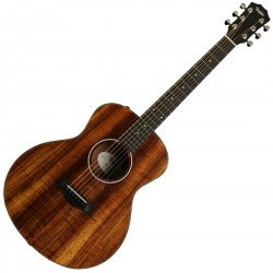 Taylor GS Mini Electro Koa Melody Music Caen