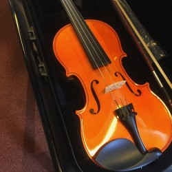 Herald Violon AS144-E Ebene